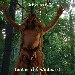Lord of the Wildwood cover